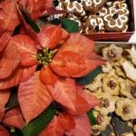 Kruche ciasteczka  i kilka słów na Nowy Rok