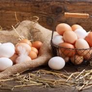 Jajka – co wiesz o nich? Ciekawostki i fakty