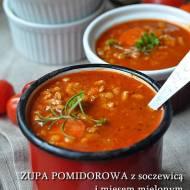 Zupa pomidorowa z soczewicą i mięsem mielonym