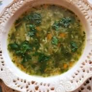 Zupa z warzyw korzeniowych z ryżem,  pokolorowana szpinakiem