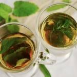 Które zioła działają przeciwwirusowo?