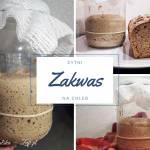 Zakwas chlebowy — krok po kroku. Jak zrobić żytni zakwas na chleb?