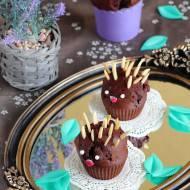 Babeczki czekoladowe jeże