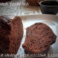 Babka kakaowa, beztłuszczowa z czekoladą