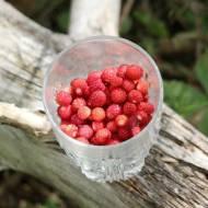 Najlepsze chrupiące gofry z bitą śmietaną i owocami