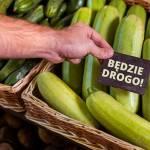 Złe informacje dla roślinożernych