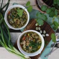 Wiosenna zupa ogrodnika z soczewicą