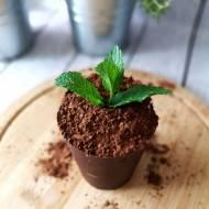 Doniczka z czekolady – spektakularny deser