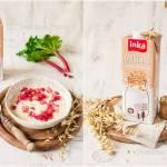 Owsianka z rabarbarem /  Porridge with rhubarb