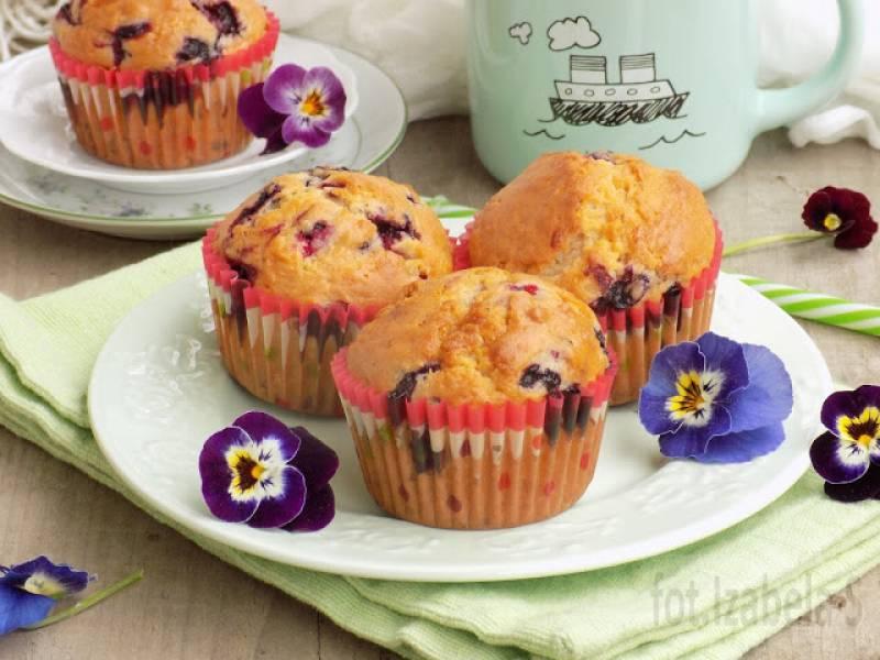 Muffinki z jagodami kamczackimi, białą czekoladą i kokosem
