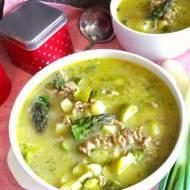 Zupa szparagowo-porowa z mięsem mielonym