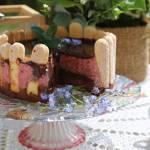 Czekoladowa charlotte , tort czekoladowo – wiśniwy