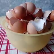 Jak wykorzystać skorupki po jajkach w ogrodzie?