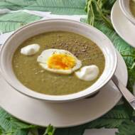 Zupa krem z pokrzywy, która smakuje jak szczawiówka :D