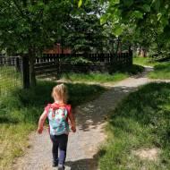 Mini zoo w Wojciechowie