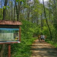 Ścieżka Dąb Dominik – Poleski Park Narodowy