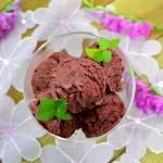 Lody jogurtowe z jagodami + film