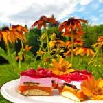 Ciasto malinowy kubuś bez pieczenia