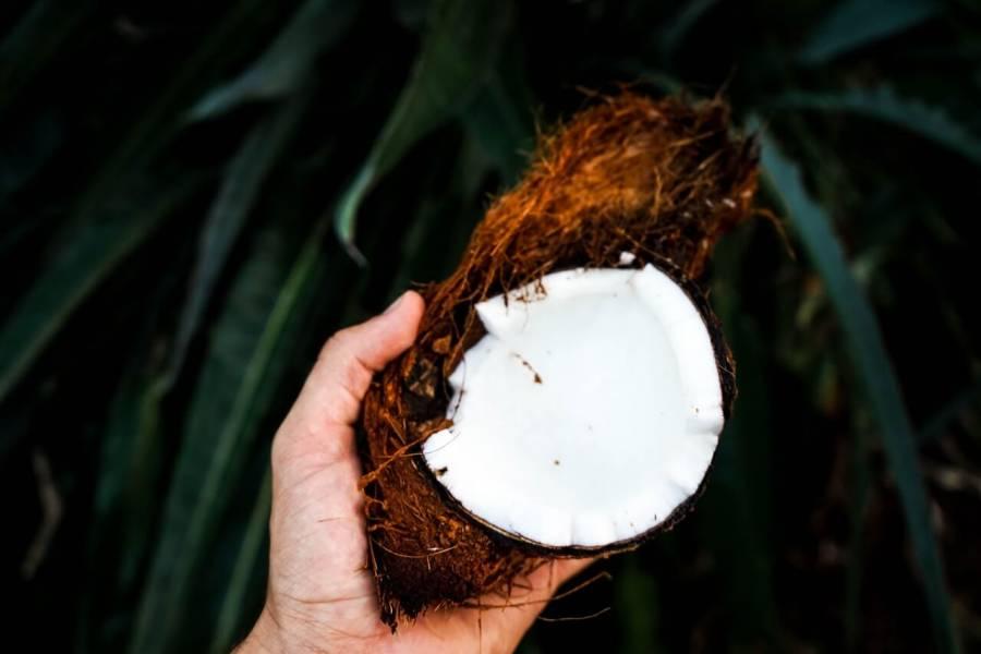 Olej kokosowy w kuchni. Jakie są jego zalety?
