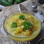 Zupa ogórkowa ze świeżych ogórków bez mięsa