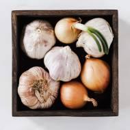 Prosty syrop z cebuli
