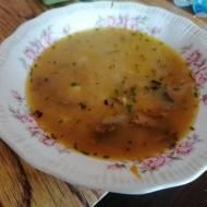Zupa grzybowa z gniewusów