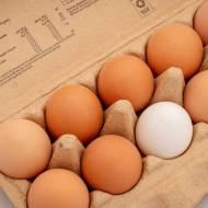 Wegetariańskie sznycle – kotlety jajeczne