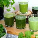 Naturalny Zielony Koktajl od BlendyGo - 5 przepisów + recenzja