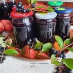 Sok z aronii i jabłek na zimę. Domowe przetwory.