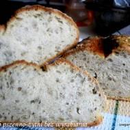 Chleb łychą mieszany błyskawiczny