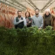 Seriale na jesień 2020 – Co warto zobaczyć na Netflixie