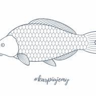 Ryby głosu nie mają?