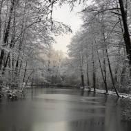 Zimowa Grabia w Ldzaniu woj. łódzkie