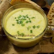 Zupa serowo-porowa na rosole