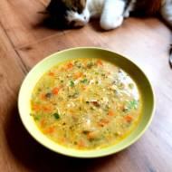 Zupa jarzynowa na indyku z grzybami