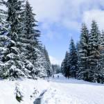 Góry Izerskie zimą