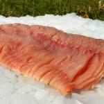 Które ryby mają ości? Sprawdź co warto o nich wiedzieć.