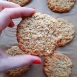 Owsiane ciastka czyli Havreflarn w wersji wegańskiej