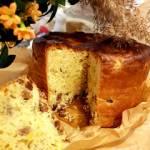 Drożdżowa babka panettone - najdelikatniejsze ciasto drożdżowe