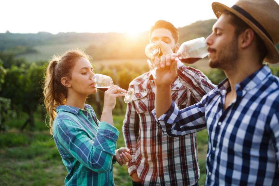 Jak powinna wyglądać degustacja wina? Poradnik dla początkujących