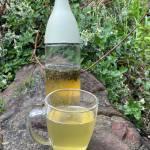 Cold brew tea – czyli herbata parzona zimną wodą
