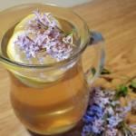 Lemoniada lilakowa