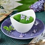 Zielony sorbet szczawiowo-cytrynowy
