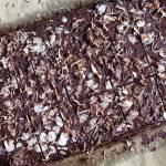 Brownie bez pieczenia z avocado i orzechami