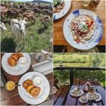 Gdzie zjeść i co zjeść w Bieszczadach? Bieszczady - subiektywny przewodnik kulinarny z najlepszym jedzeniem