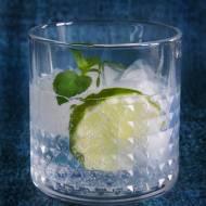 Gin z tonikiem