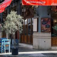 Najpopularniejsze rodzaje greckich potraw