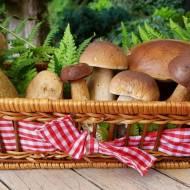 Gotowanie grzybów. Wskazówki, które warto poznać